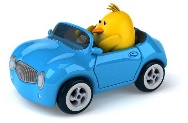 bird-blue-car
